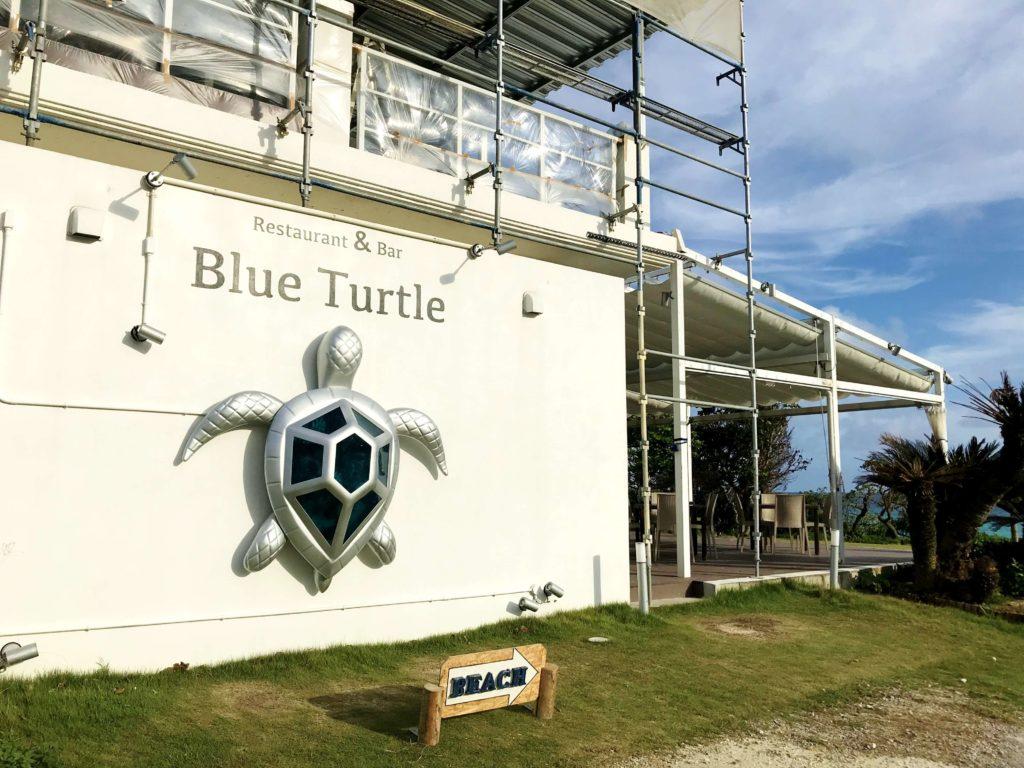 blueturtle2