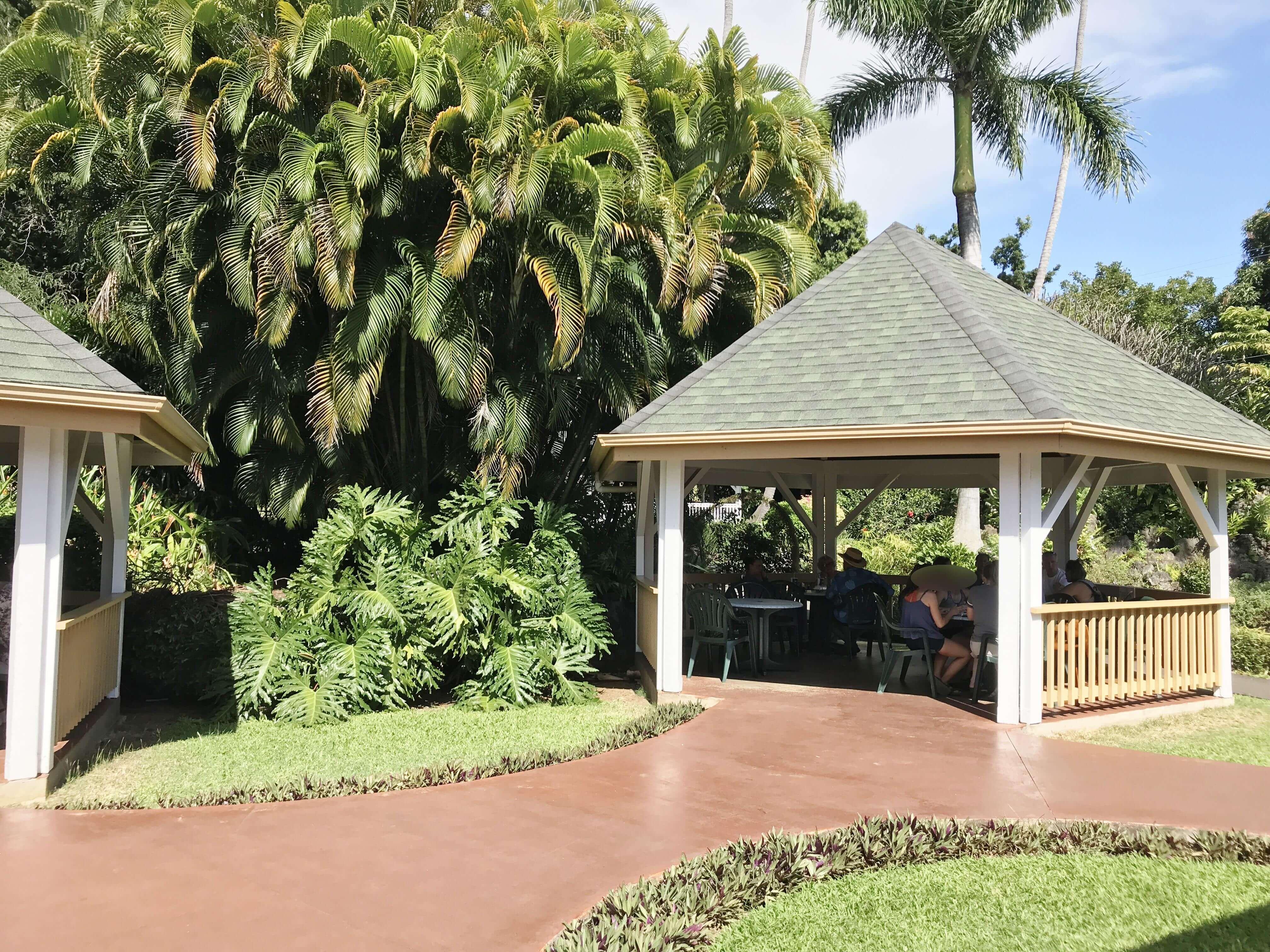ハワイ-プナルウベイクショップ-ガーデン