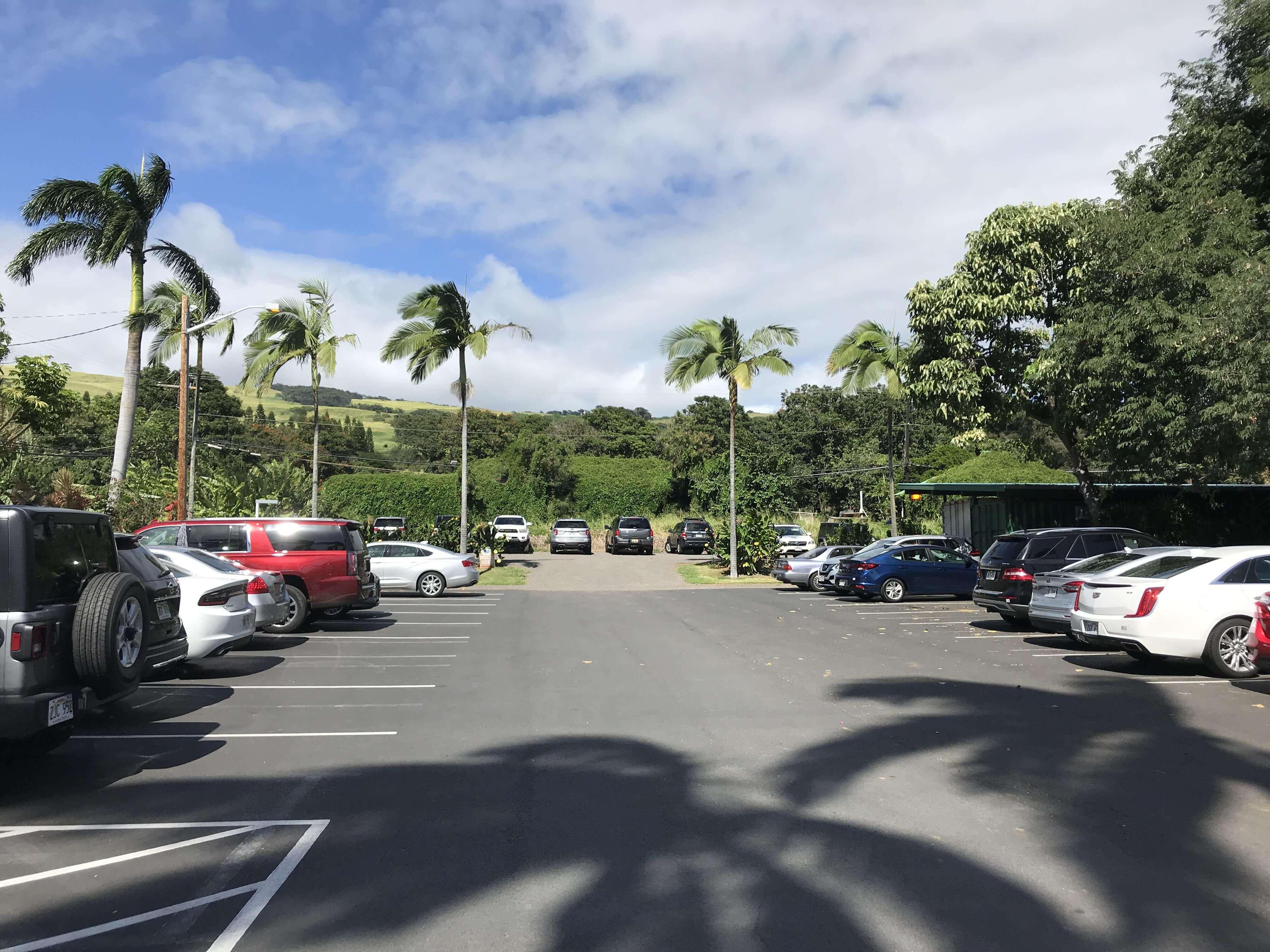 ハワイ-プナルウベイクショップ-駐車場2
