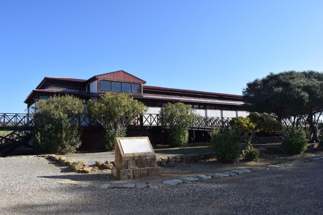 ディオニソスの家
